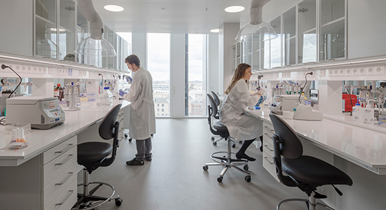Lab workers in environment